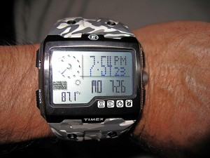 Timex WS4 Expedition Watch