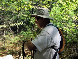 checking compass in Harold Parker forest