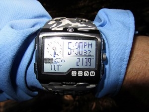 checking data on Timex WS4