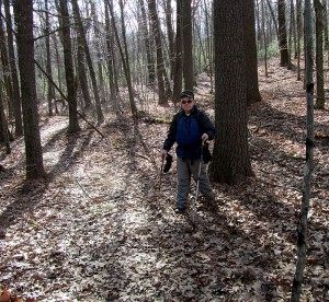 Boxford State Forest