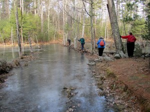 Boxford State Forest crossing water