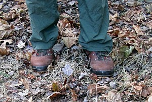 a last look at the Tedinho low cut shoes