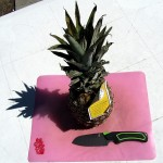 Gerber Camp Kitchen knife before cutting pineapple