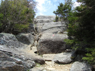 near summit of Bald Mountain