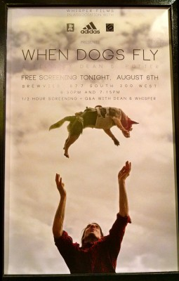 OR 2014 When Dogs Fly
