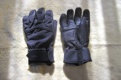 Sealskinz WP Cold Weather Glove